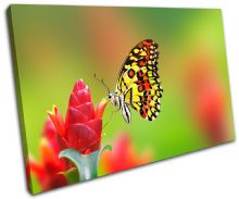 Butterfly Flowers Animals - 13-1486(00B)-SG32-LO